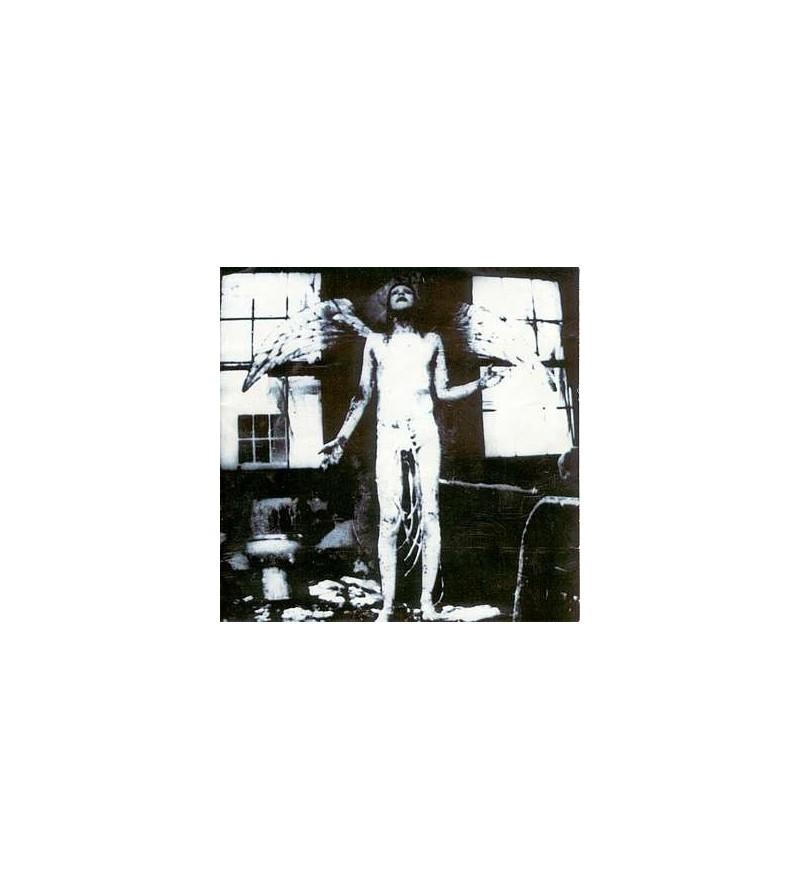 Antichrist superstar (CD)