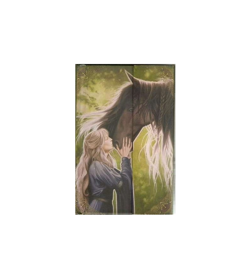 Notes-book elfe et cheval, petit format