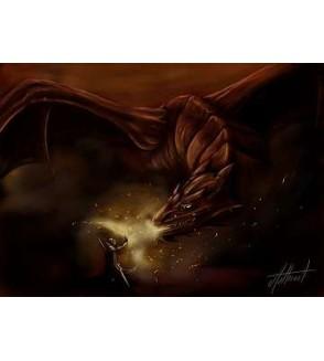 Affiche Dragon trainer