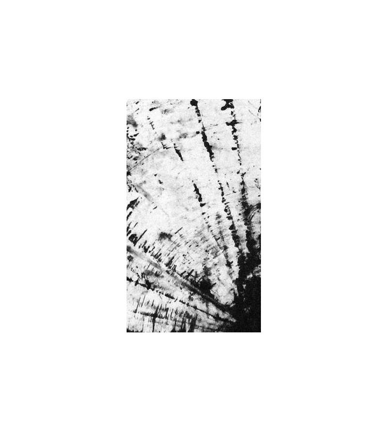 Felt dreams (Ltd edition cassette tape)