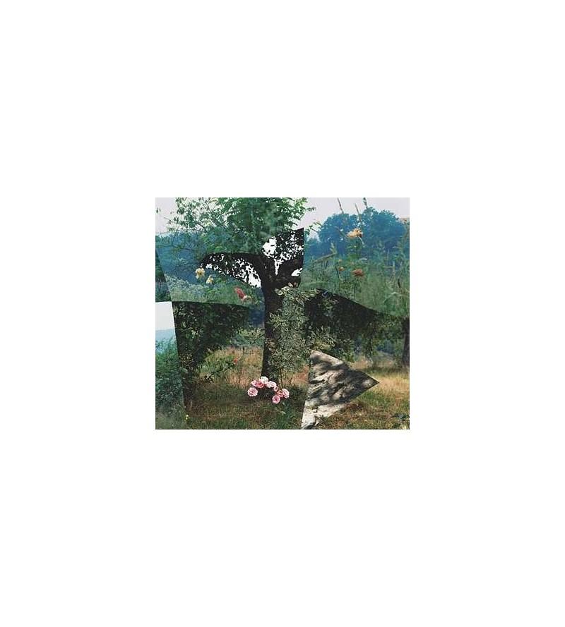 Simulacra (CD)