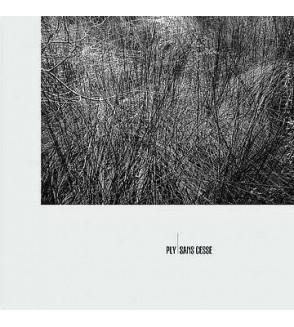 Sans cesse (12'' vinyl)