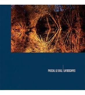 Landscapes (10'' vinyl)