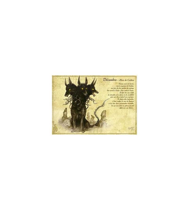 Carte postale Décembre – mois de Cerbère