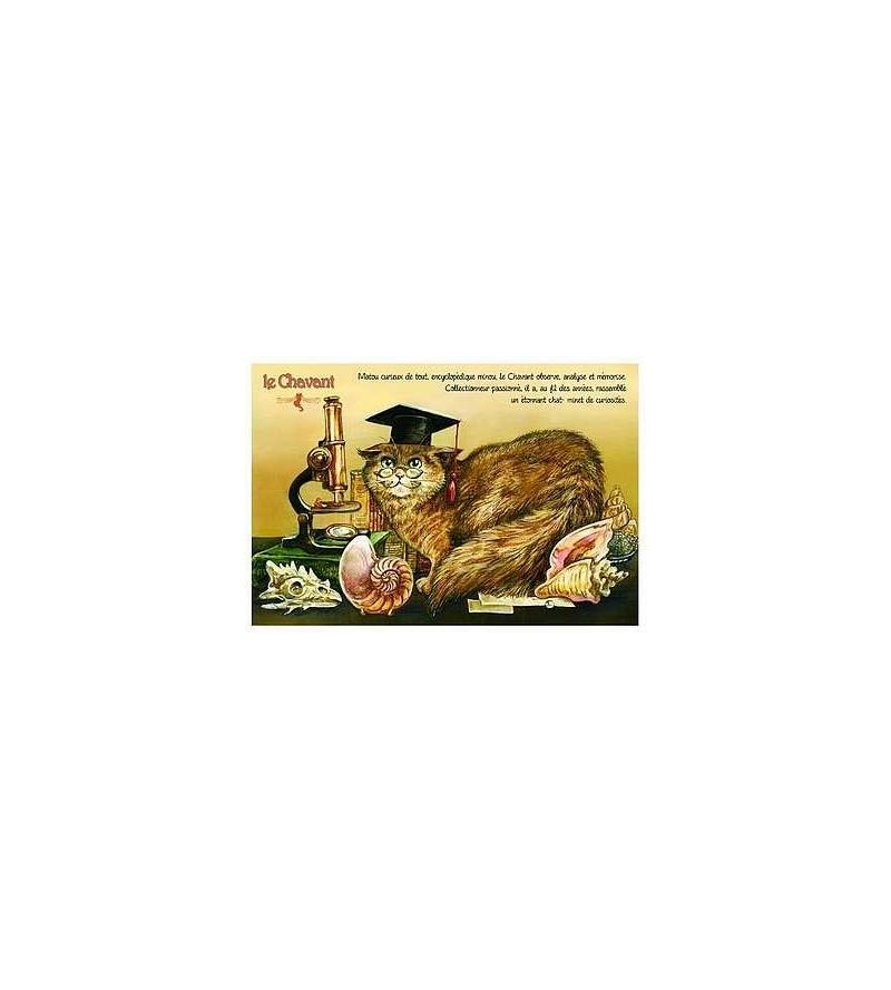 Carte postale Le chavant