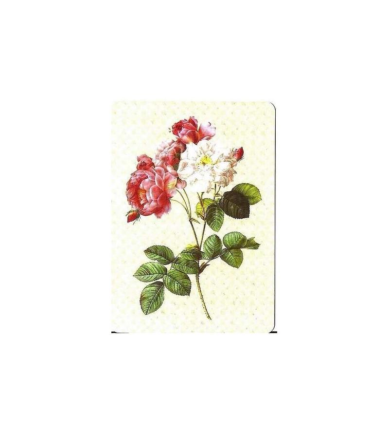 Carte postale rose ancienne