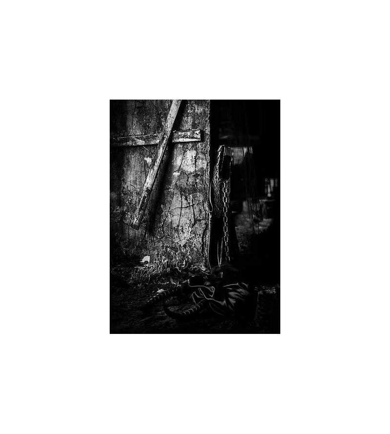 Le chant des ruines (CD)