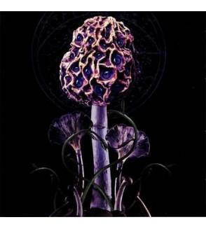 Hallucinogen (CD)