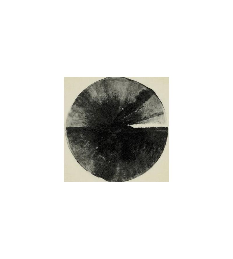 A dawn to fear (2 X 12'' vinyl)