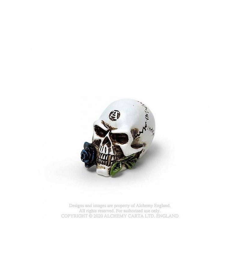Miniature Alchemist skull