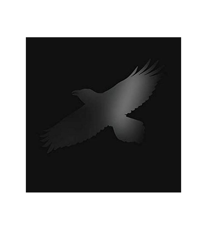 Sigur ros : Odin's raven...