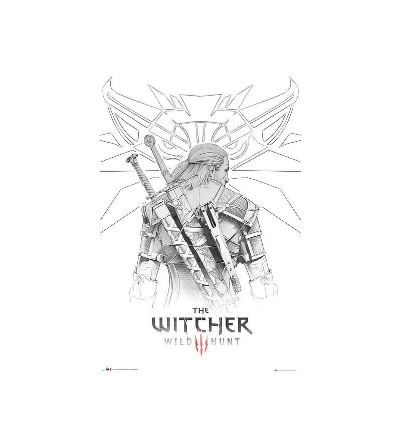 Affiche The witcher :...