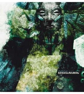 Quelques siècles d'insomnie (Vinyle)