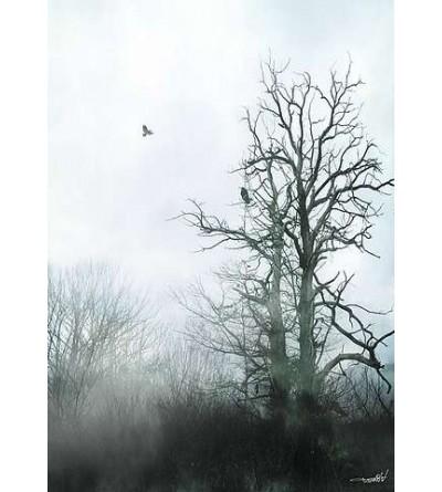 Affiche Winter call