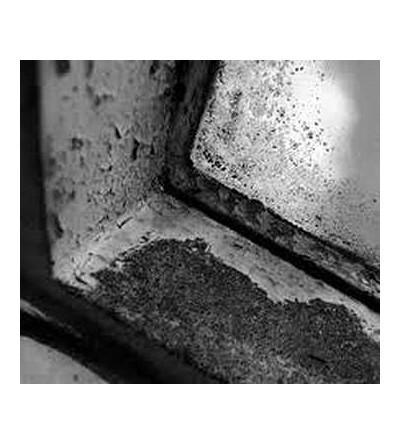 The hearts of empty (CD)