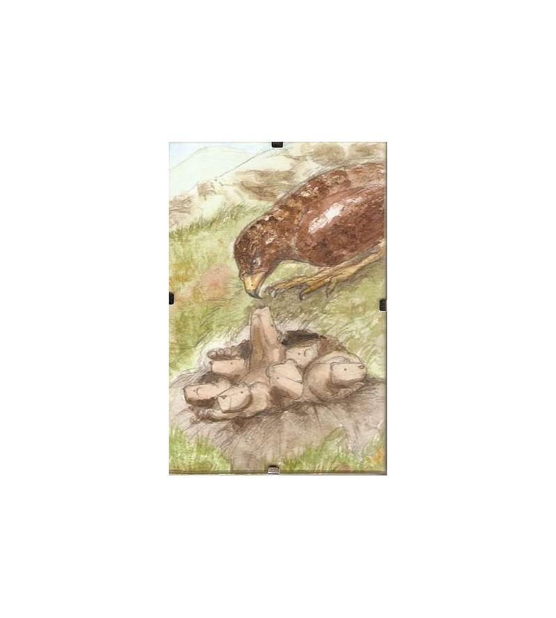 Cadre Marmottes et aigle